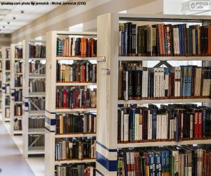 Puzle Knihovna