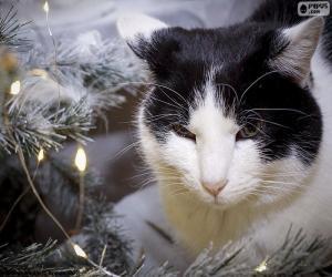 Puzle Kočka na Vánoce