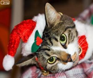 Puzle Kočka s kloboukem Santa Claus