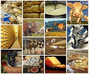 Puzle Koláž sýra