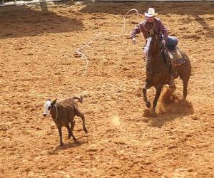 Puzle Kovboj na koni na koni a chytání kusů skotu s lasem