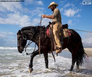 Puzle Kovboj u moře