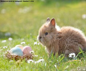 Puzle Králíků a velikonoční vajíčka