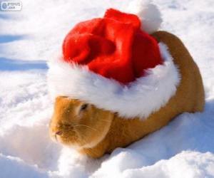 Puzle Králík s kloboukem Santa