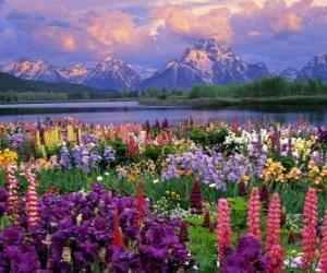 Puzle Krajina na jaře