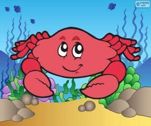 Puzle Kreslicí krabů