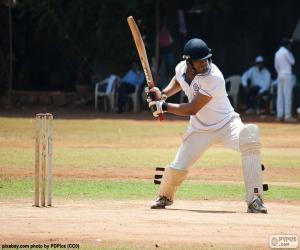 Puzle Kriket batsman