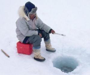 Puzle Led rybolov