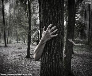 Puzle Lesa hrůzy