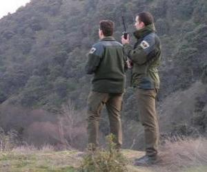 Puzle Lesní stráže