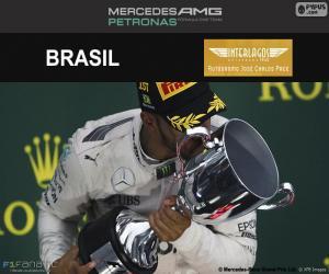 Puzle Lewis Hamilton, Grand Prix Brazílie 2016