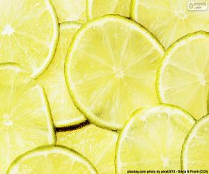 Puzle Limeta, ovoce