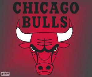 Puzle Logo Chicago Bulls, NBA tým. Centrální Divize, Východní konference