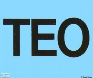 Puzle Logo Teo
