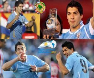 Puzle Luis Suarez nejlepší hráč na Copa America 2011