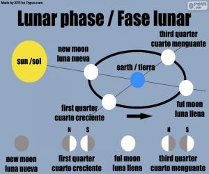 Puzle Měsíční fáze