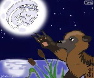 Puzle Měsíc a medvěd