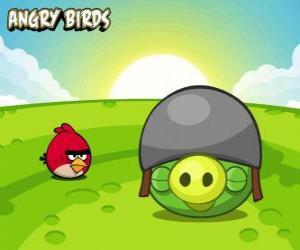 Puzle Malý červený pták u prasat s přilbou