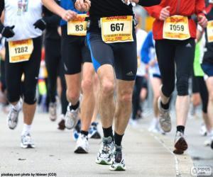 Puzle Maraton