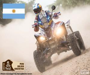 Puzle Marcos Patronelli, Dakar 2016