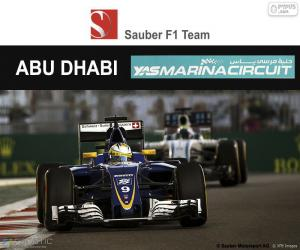 Puzle Marcus Ericsson, Grand Prix Abú Zabí 2016