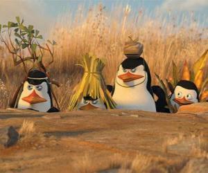 Puzle Maskovaný Penguins