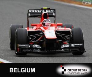 Puzle Max Chilton - Marussia - Spa-Francorchamps, 2013