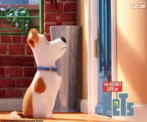 Puzle Max před dveře