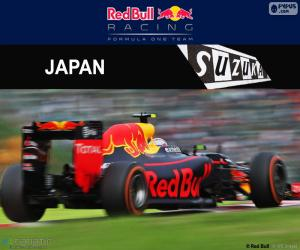 Puzle Max Verstappen, Grand Prix Japonska 2016
