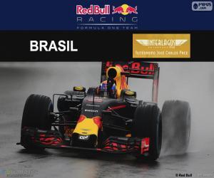 Puzle Max Verstappen, Grand Prix Brazílie 2016