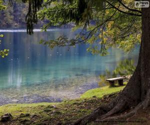 Puzle Meditace na jezeře