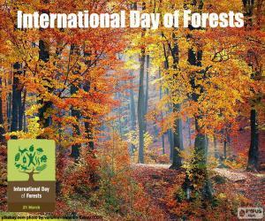 Puzle Mezinárodní den lesů
