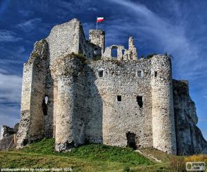 Puzle Mirów hrad, Polsko