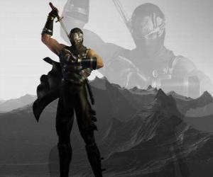 Puzle Mistr ninja