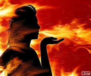 Puzle Mloci, požární víla