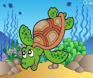 Puzle Mořská želva