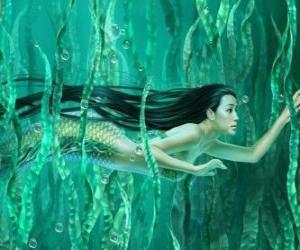 Puzle Mořská panna plavat mezi mořských řas