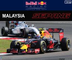 Puzle M.Verstappen, Grand Prix Malajsie 2016