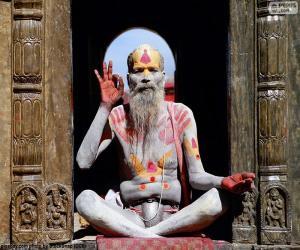 Puzle Náboženství v Indii