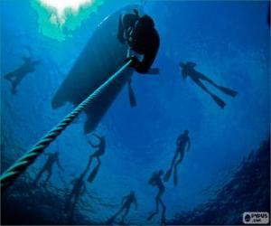 Puzle Nádechové potápění