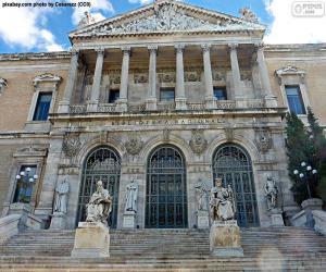 Puzle Národní knihovna Španělska, Madrid