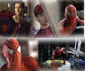 Puzle Několik obrázků z Spiderman