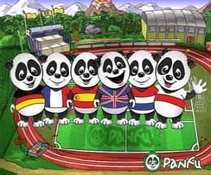 Puzle Několik Panfu panda T-shirts některých národních týmů