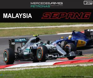 Puzle N. Rosberg, Grand Prix Malajsie 2016