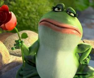 Puzle Nanette, zahrada žába