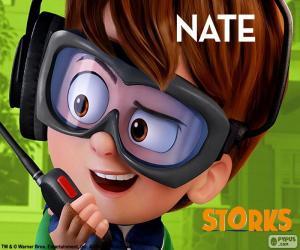 Puzle Nate, Čapí dobrodružství