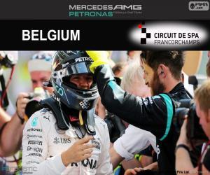Puzle Nico Rosberg, Grand Prix Belgie 2016