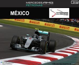 Puzle Nico Rosberg, Grand Prix Mexika 2016