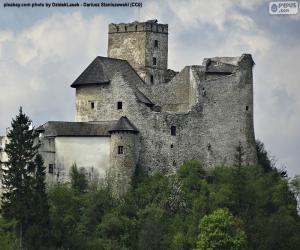 Puzle Niedzica Castle