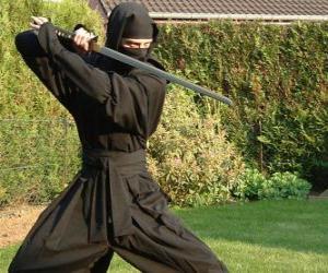 Puzle Ninja bojovníka a boj s katana